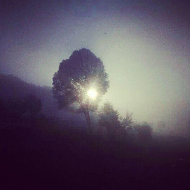 #amazing #whpfoggy #me #sunrise #WHPuniqueportraitsoflove Amazing Whpfoggy Whpuniqueportraitsoflove Me Sunrise