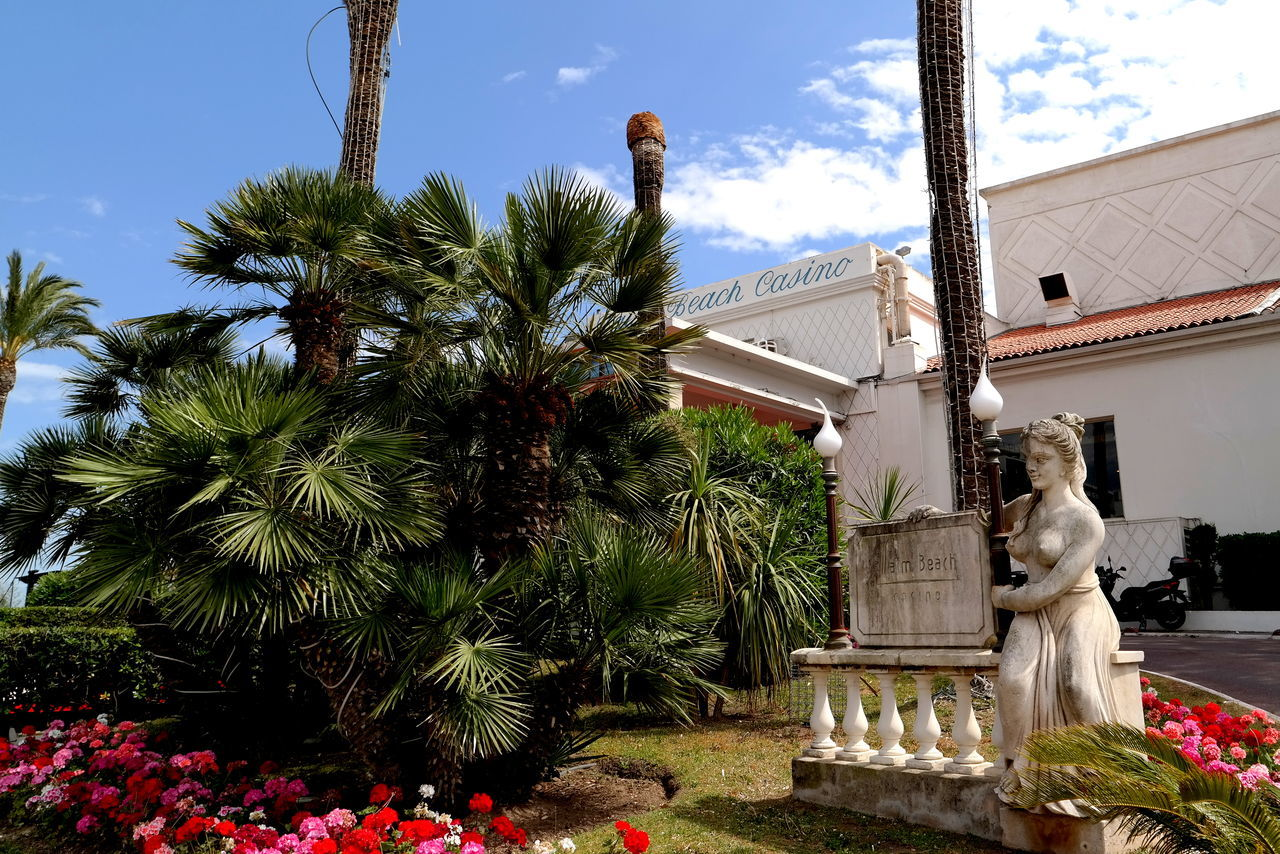 statue, tree, sculpture, building exterior, architecture, built structure, palm tree, sky, outdoors, no people, day, nature