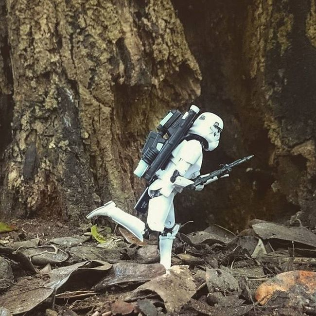 Norman had no option but to run. Rebel forces were closing in and he still had no radio contact. Tired but determined, he wasn't about to quit now! Normanthetrooper Stormtrooper Starwarsblackseries Starwars Starwarselite Toyptoyphotography Toyoutsiders Zifu_toys Tgif_toys Toyslagram_Starwars Afosw Toydiscovery Toyunion Justanothertoygroup Toyartistry Toysaremydrug Huntingrebelscum Wheretoysdwell
