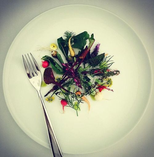Micro Vegetables Summer Crudités Chef At Work Chef With A Camera