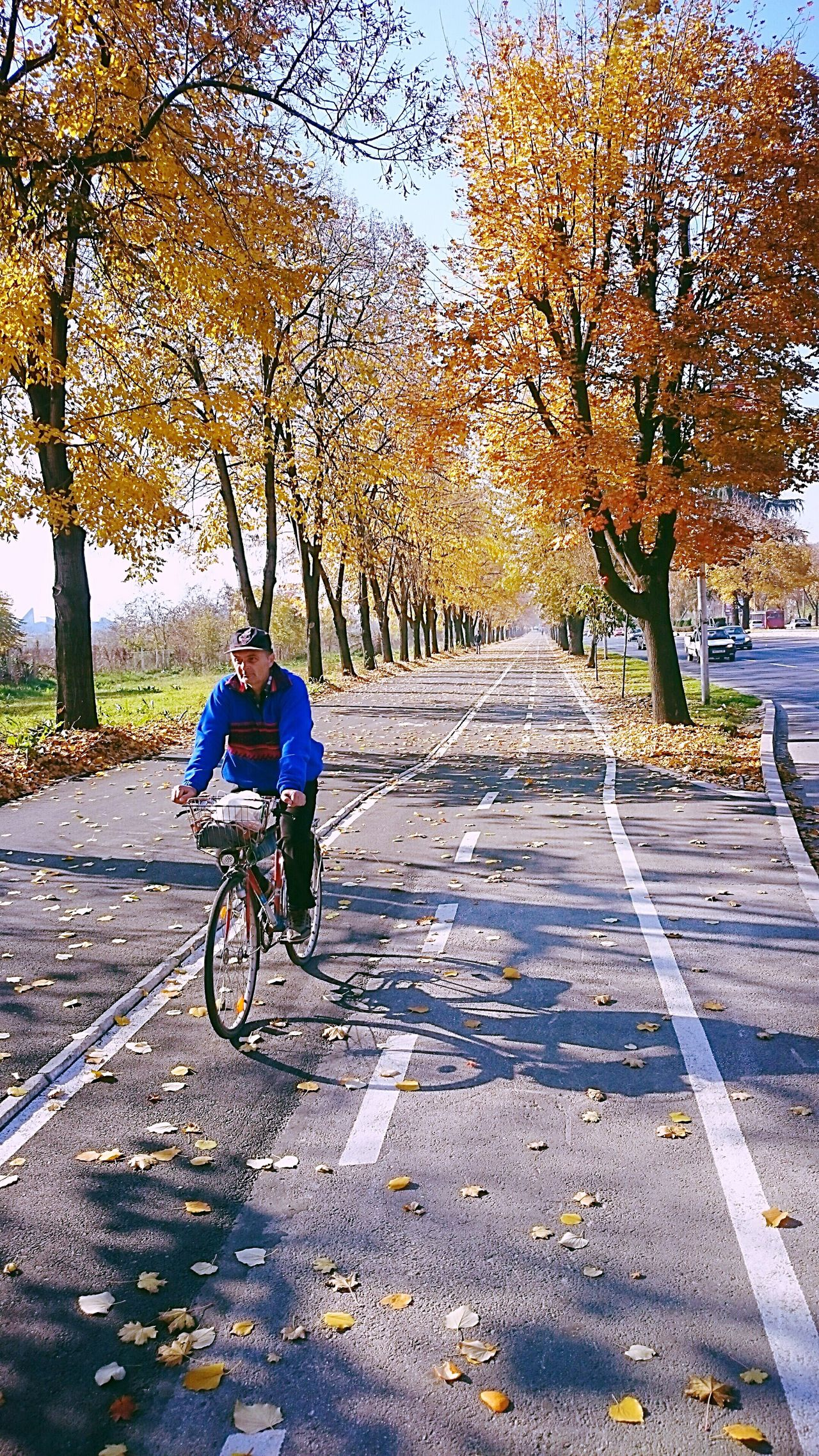 Autumn is beautiful... Bicycle One Person Autumn Beauty In Nature Nature Perfect Loveautumn LoveAutumnColors Macedonia Skopje Tree