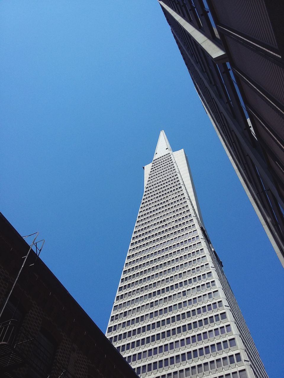 The transamerica pyramid. · San Francisco SF California CA USA Architecture skyscraper Skyscrapers transamerica building transamerica tower Urban geometry urban landscape Cityscape up