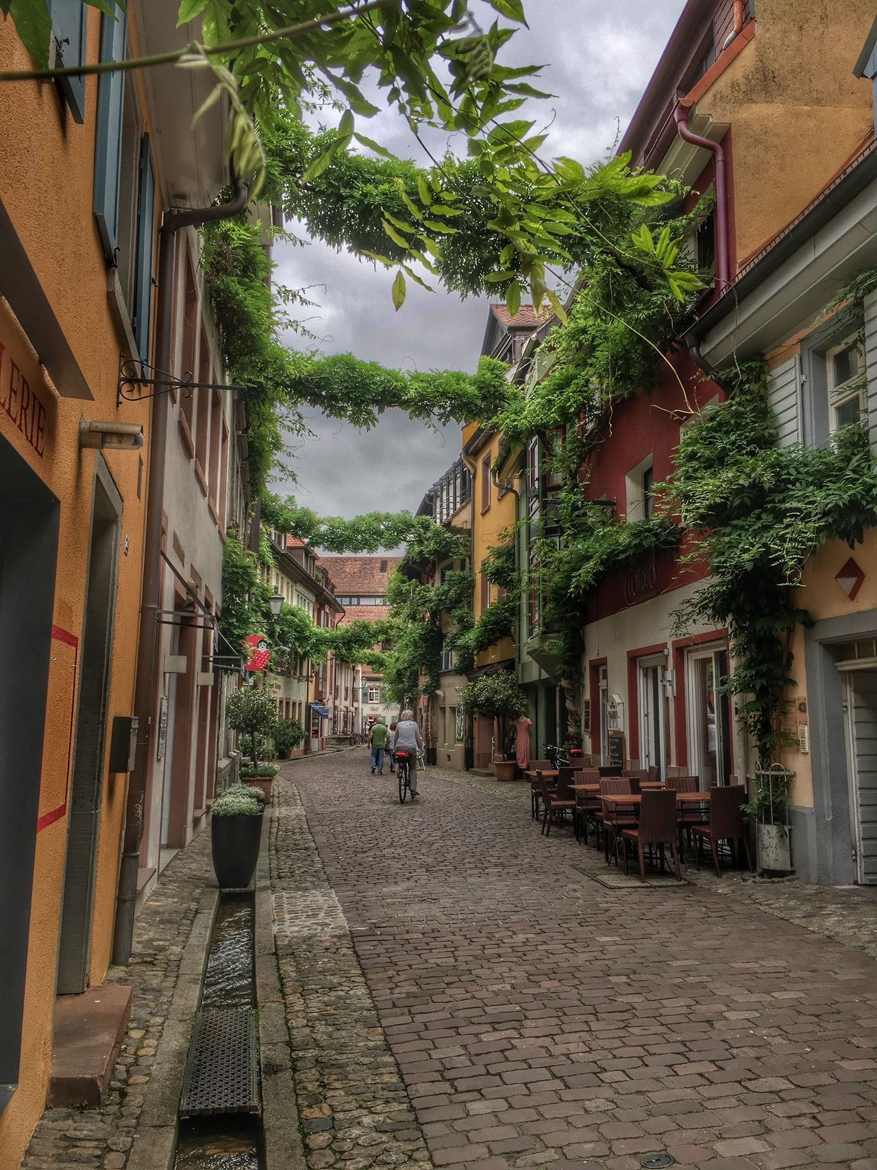 Bächle City Cloud - Sky Cobblestone Cosy Day Old Town Residential Building Street