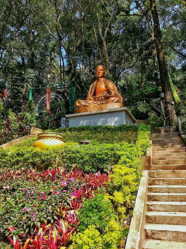Spotted In Thailand Buddha Buddhism Religious Icons Statue Garden Traveling Gold Peace And Quiet Peaceful Wat Phrathat Doi