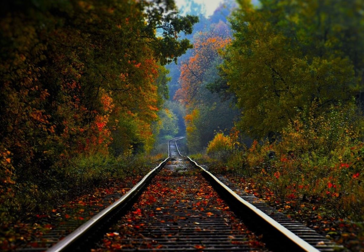 Railroad Track Rail Transportation The Way Forward Nikonphotographer Beauty In Nature Outdoors EyeEm Best Shots Somwhere In Germany 🎬 Somewhere In Germany EyeEm Nature Lover Autumn Impressions🍁🍂🎃 EyeEm Best Shots - Nature Irgendwo In Deutschland 🎬 EyeEm Gallery Nikonphotography Travel EyeEm