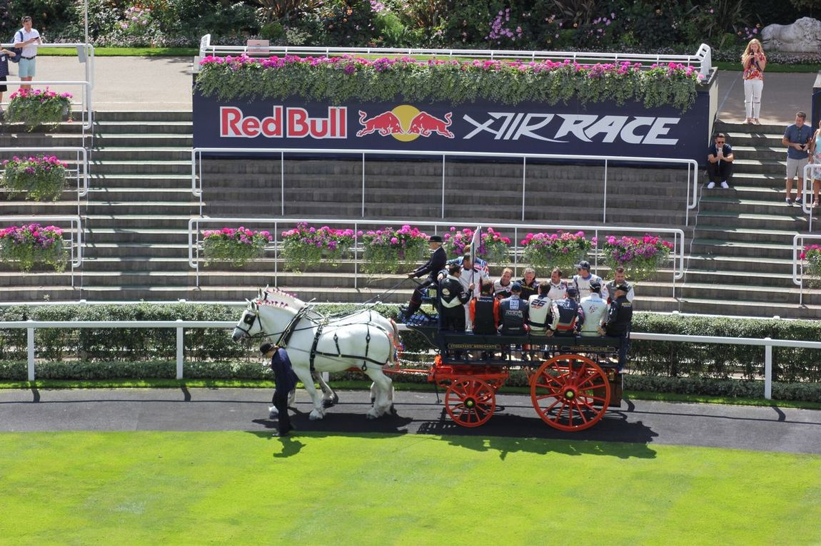 Horse drawn cart full of Red Bull Air Race Pilots Transportation Mode Of Transport Ascot Airshow Transportation RedBull Redbullairrace2016 Redbullairrace Horse Horseandcart Horse And Carriage Traditional Pilot