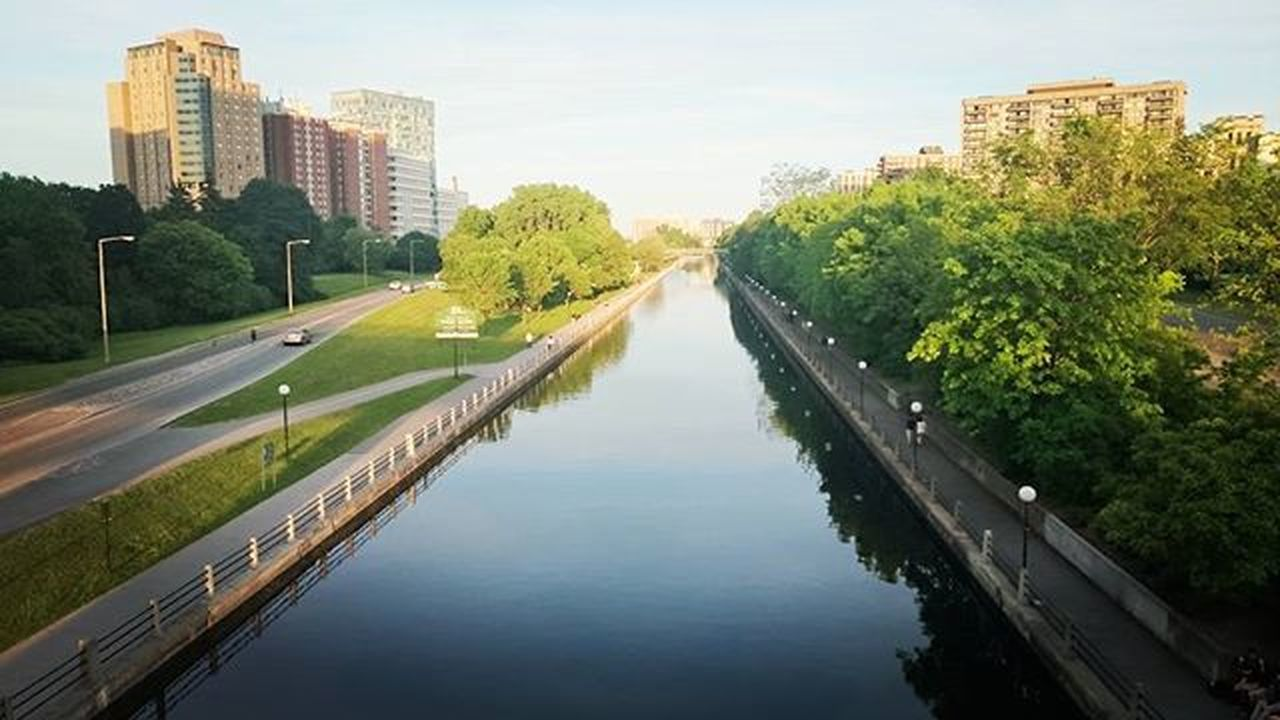building exterior, architecture, city, skyscraper, built structure, tree, cityscape, reflection, outdoors, river, urban skyline, no people, water, downtown district, city life, sky, modern, day, nature
