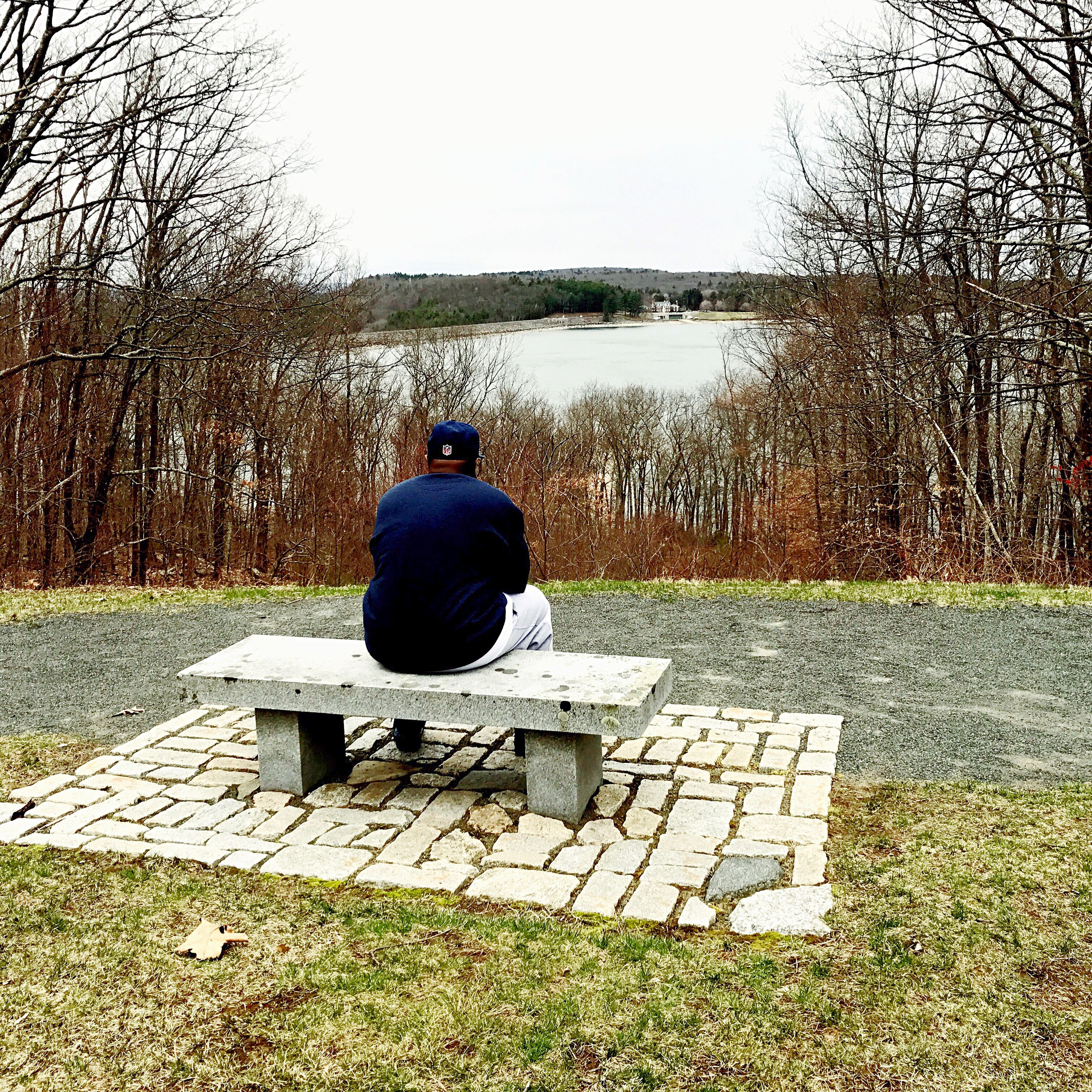 sitting, real people, one person, clear sky, rear view, sky, men, nature, full length, outdoors, day, beauty in nature, one man only, mammal, people