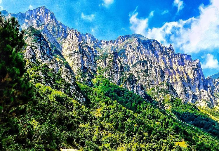 My mountains Walking In The Mountains trekking Summer 2015 ❤😁 Mountain Mountain Range Blue Green Color Landscape Sky Pine Tree Nature Beauty In Nature Tree Pine Woodland Mountain Peak Scenics Forest No People Growth Outdoors Snow Day EyeEmNewHere Art Is Everywhere