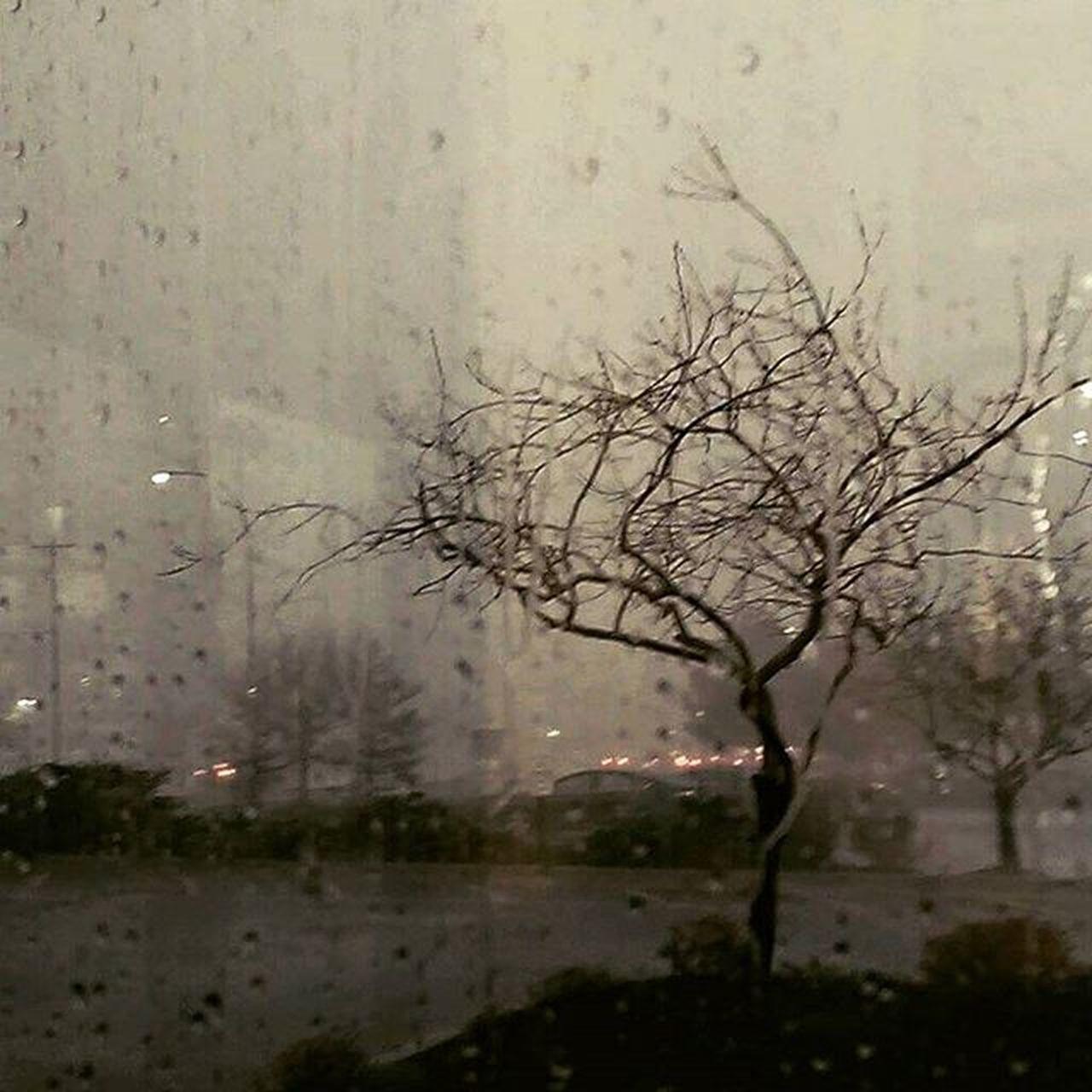 Ohio Throwback Cafewindow RainyDay