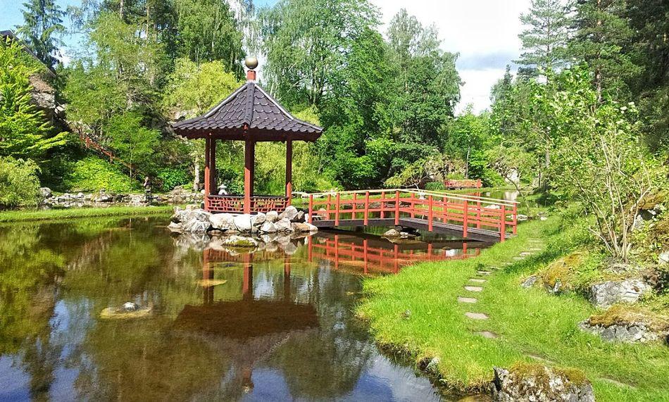 Beautiful stock photos of tokyo, Beauty In Nature, Bridge, Day, Grass