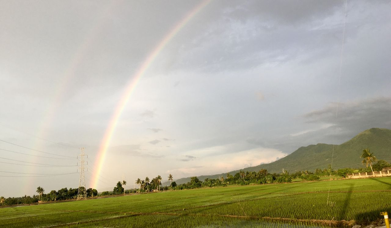 rainbow, double rainbow, nature, scenics, beauty in nature, landscape, sky, field, tranquil scene, tranquility, no people, day, outdoors, tree