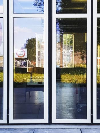 Growth Plant Reflection Day Door Doorway Glass Glass - Material Indoors  Interior Looking Through Window Outdoors Reflection Reflections Sky Transparent Window Windows