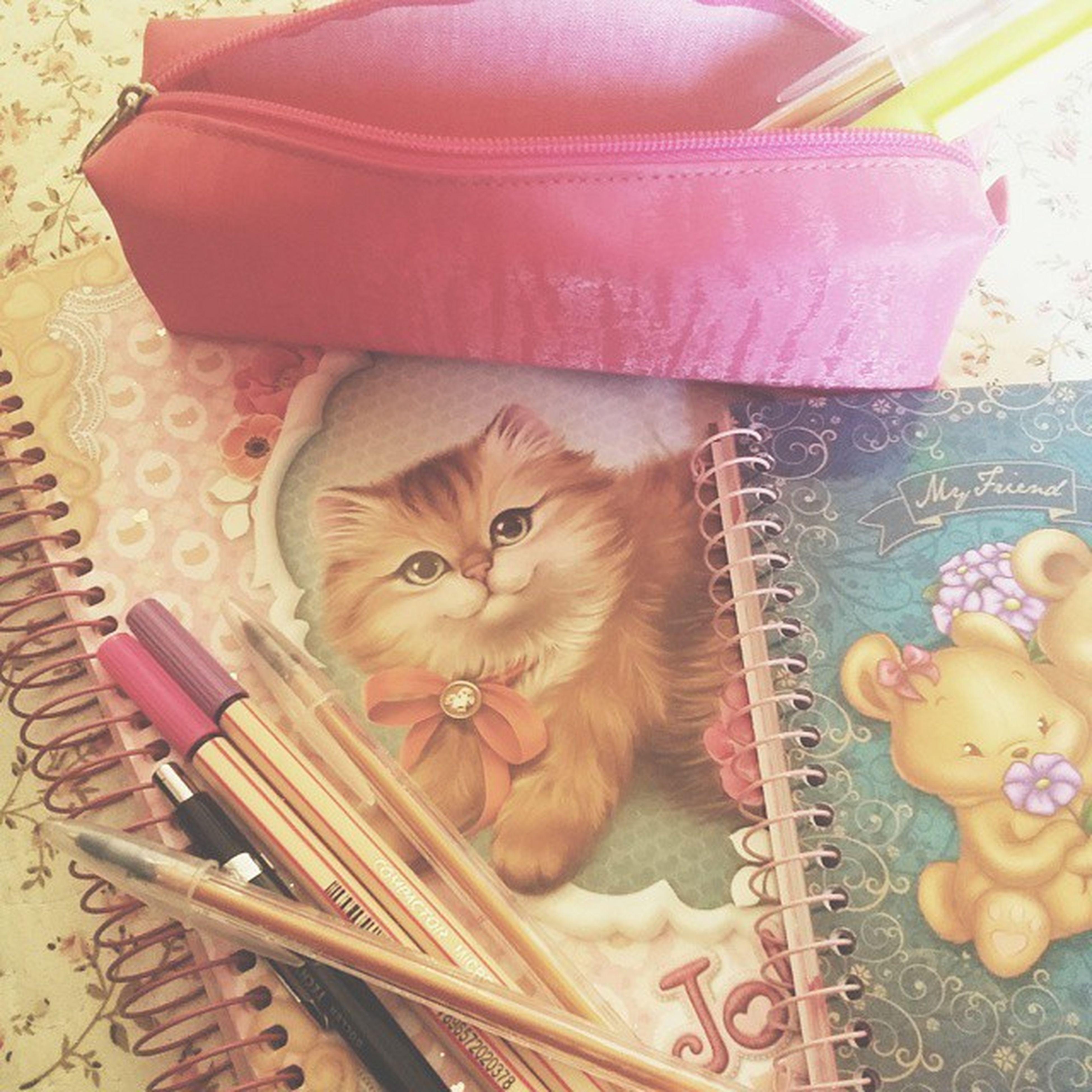 Criança feliz começando o semestre haha (@qthais, comprei esse caderno em tua homenagem) Psicología VoltamosRealidade ♡