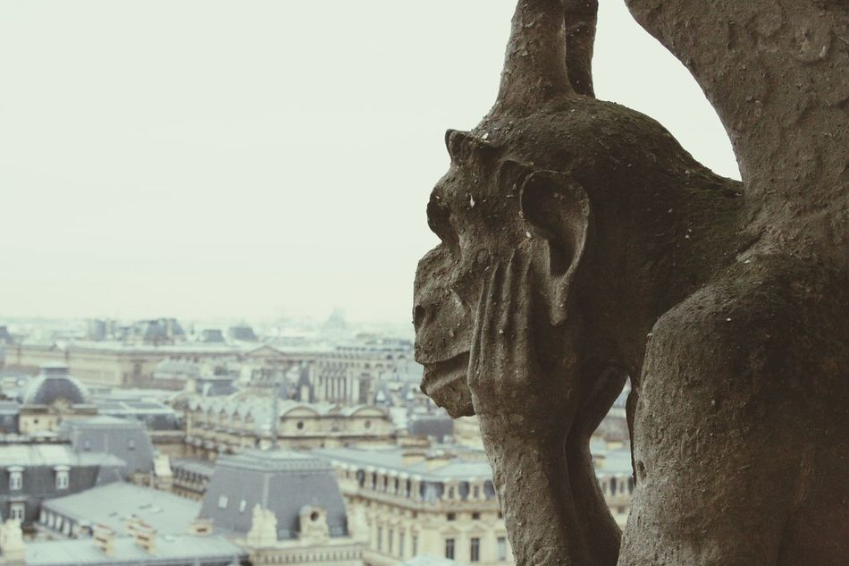 Beautiful stock photos of notre dame, Animal Representation, City, Cityscape, Day
