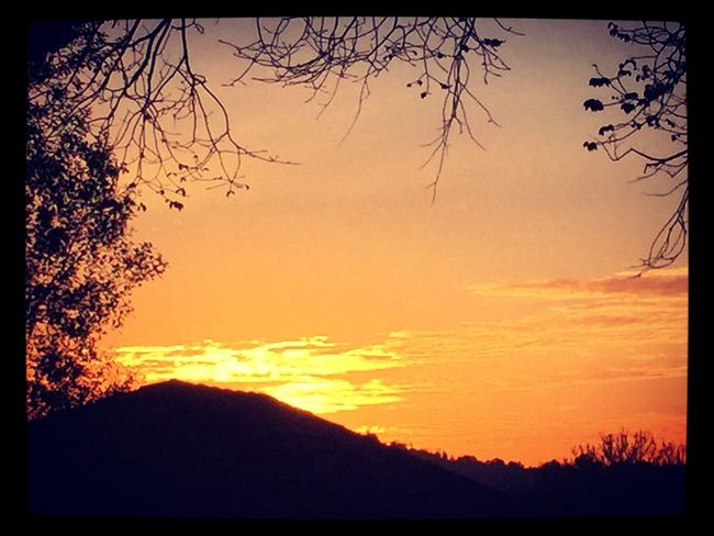 Sunset yesterday ☀️🍃☀️ Sunset Beautiful Nature Home