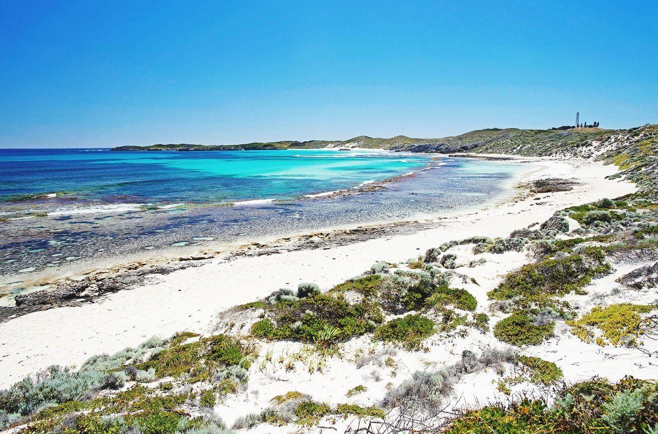 Rottnest island Blue Sea Beach Nature Outdoors Landscape Australia Nature Photography Travel Destinations Western Australia Perth