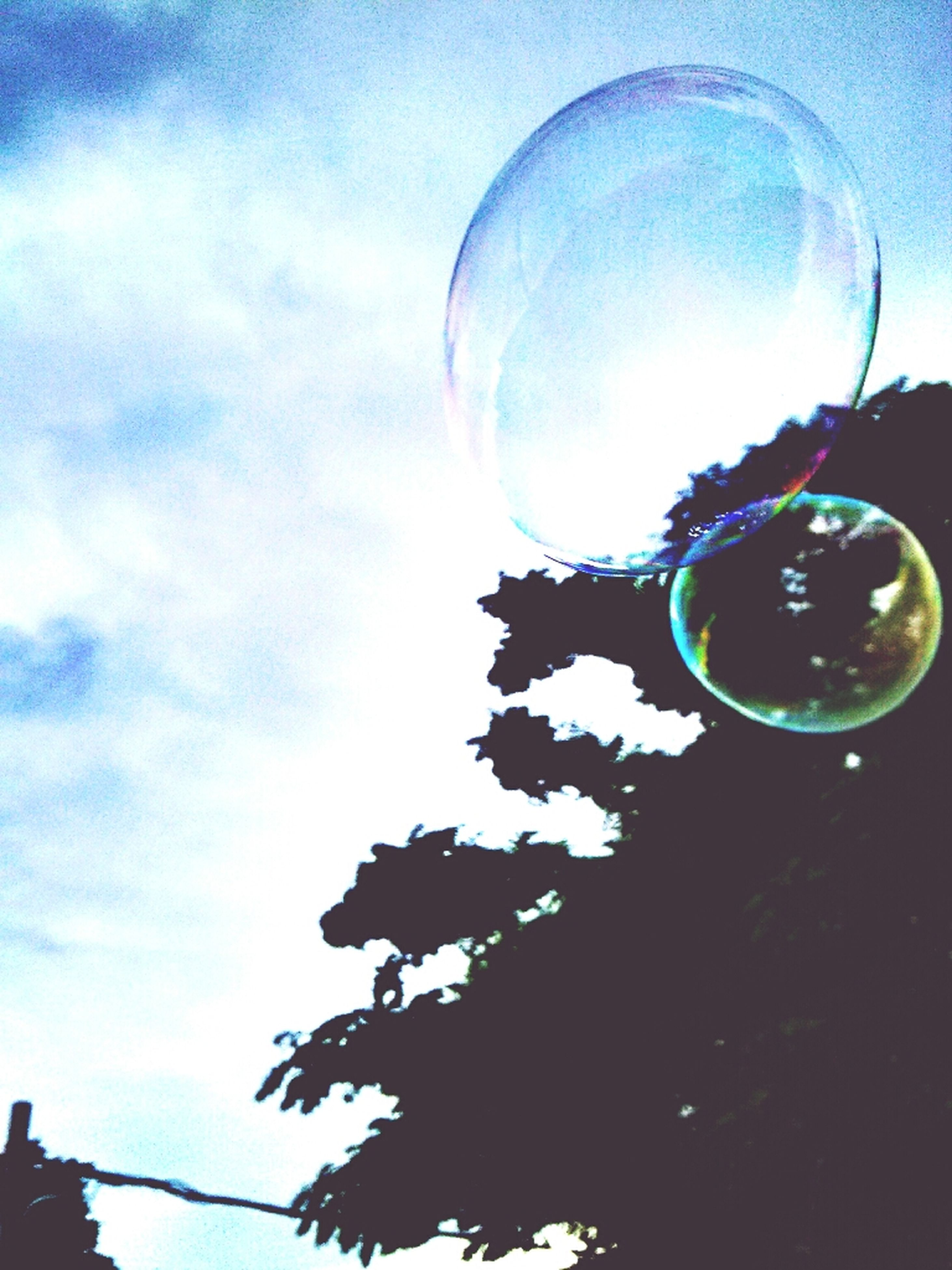 low angle view, sky, blue, sphere, glass - material, circle, transparent, reflection, cloud - sky, close-up, no people, lighting equipment, bubble, nature, fragility, mid-air, outdoors, illuminated, tree, day