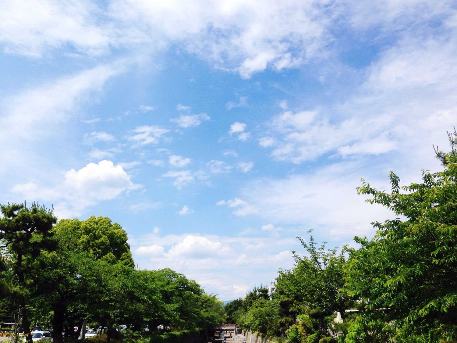 Kyoto Cloud And Sky Green