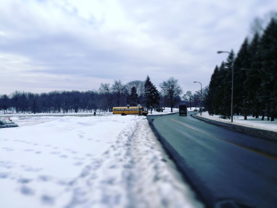 Canada Montreal Winter Snow Cold Temperature Transportation Cloud - Sky Weather Mode Of Transport Tree Car Nature Winter Sport Sky Day Road No People Outdoors Mountain
