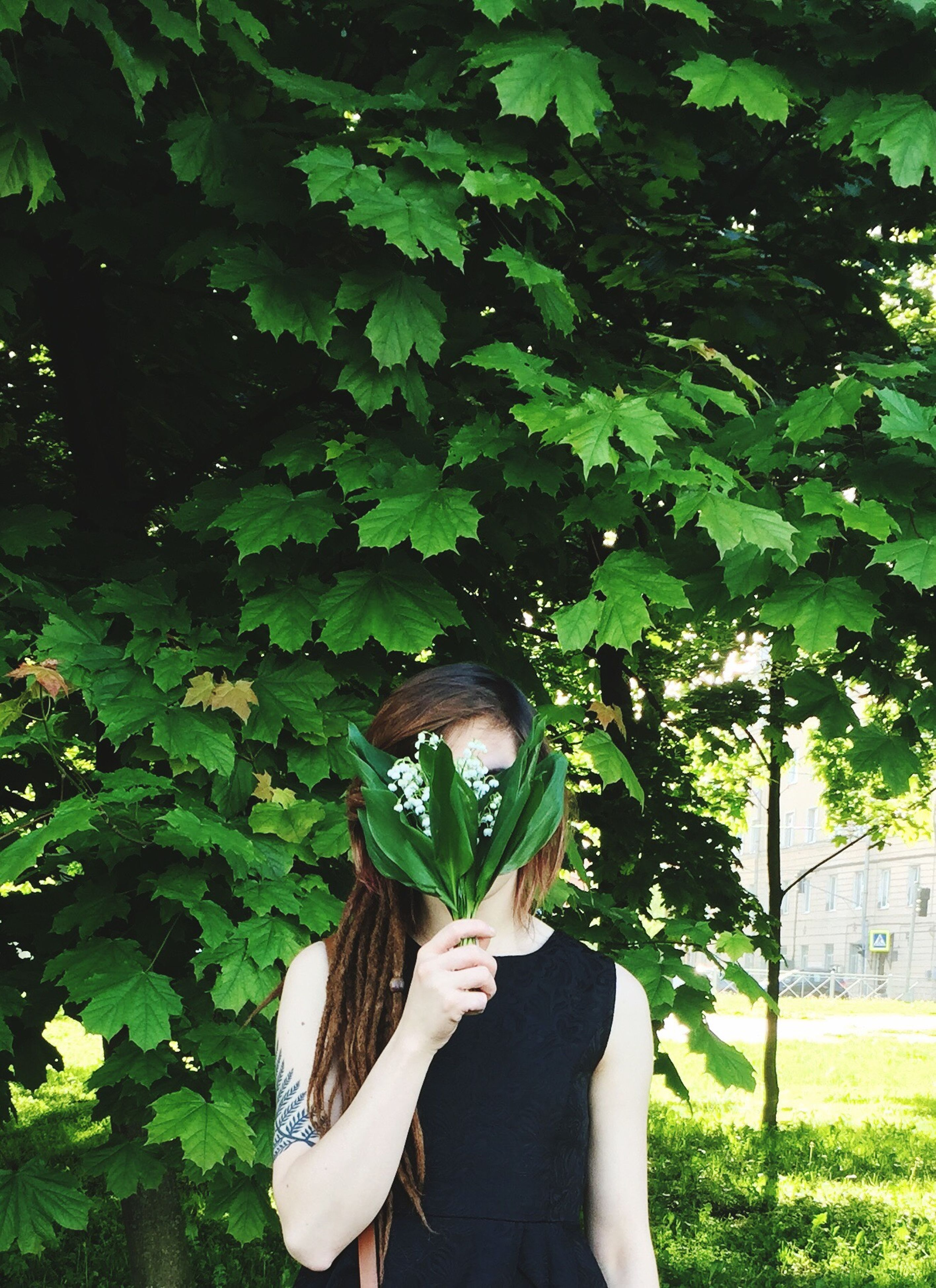 green color, real people, one person, tree, front view, growth, young women, leaf, young adult, leisure activity, lifestyles, holding, plant, day, outdoors, nature, women, human hand, adult, people