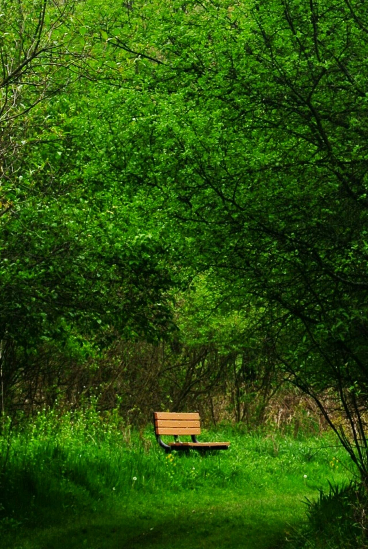 Take A Seat And Relax 😄 Relaxing Enjoying Life EyeEm Nature Lover Nature_collection Nikon Landscape_Collection