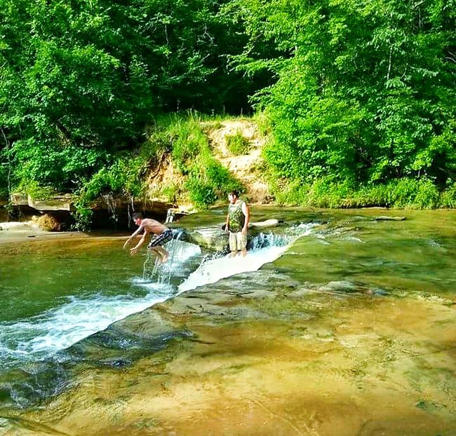 Photography In Motion Man Diving Into Water Waterfall Waterscape People Watching People Of EyeEm Outdoor Activities Rocky Falls Playing In The Water Tree-lined Creek Summer Fun People Swimming The Essence Of Summer Rocky Falls,crystal Springs Ms.usa Turkey Creek,crystal Springs, Ms.usa Swimming Diving Water Activities Need For Speed Hidden Gems  Crystal Springs, MS. USA Home Is Where The Art Is People And Places
