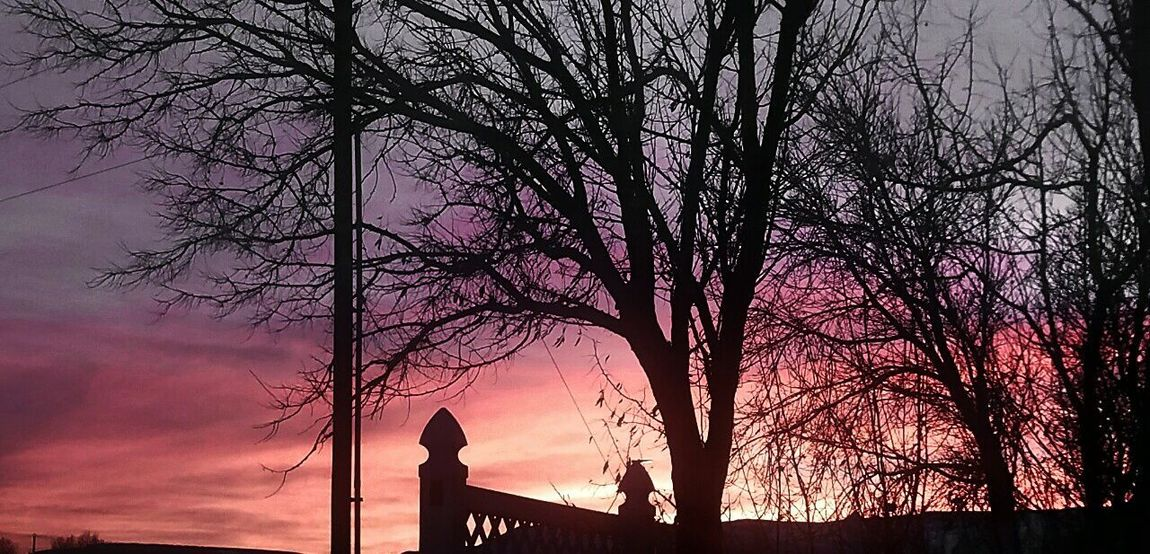 Sunset Wyoming Sky Lovely Pink And Grey Trees Sillouettes Night Fall