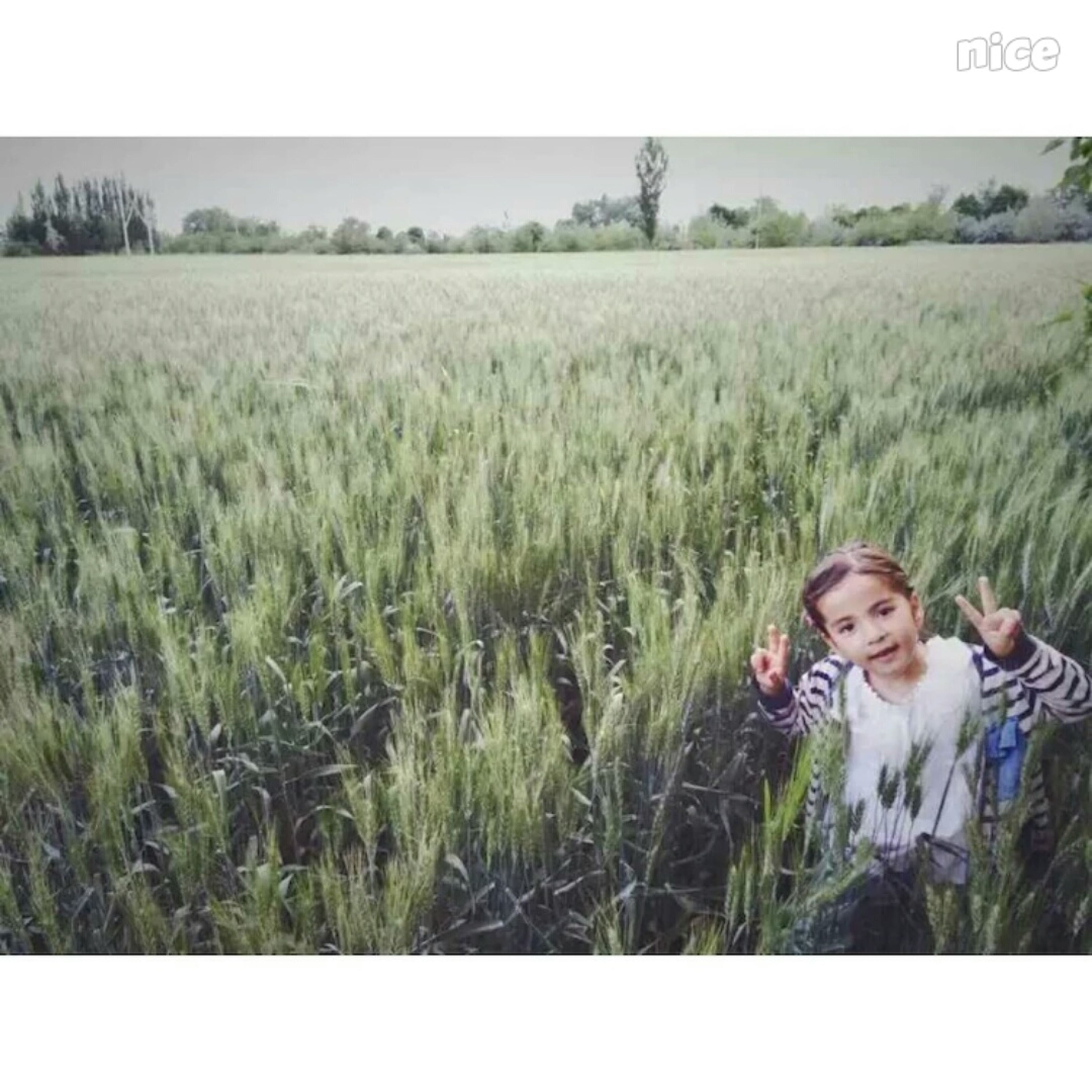 person, grass, field, lifestyles, casual clothing, young adult, leisure activity, portrait, transfer print, smiling, looking at camera, auto post production filter, elementary age, growth, front view, young women, green color, standing