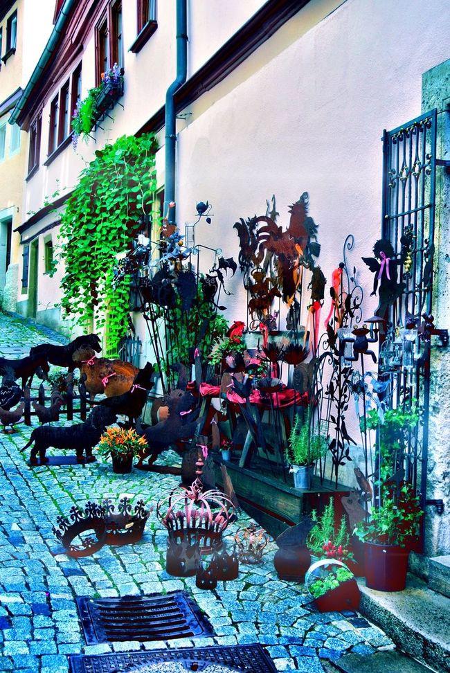 Landscape Taking Photos Traveling Rothenburg O. T.