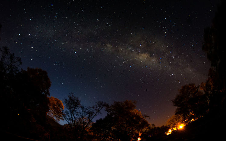 4 am de la mañana en rio chiquito de bagaces Astronomy Beauty In Nature Constellation Galaxy Low Angle View Milky Way Nature Night No People Outdoors Sky Space Tranquility Tree