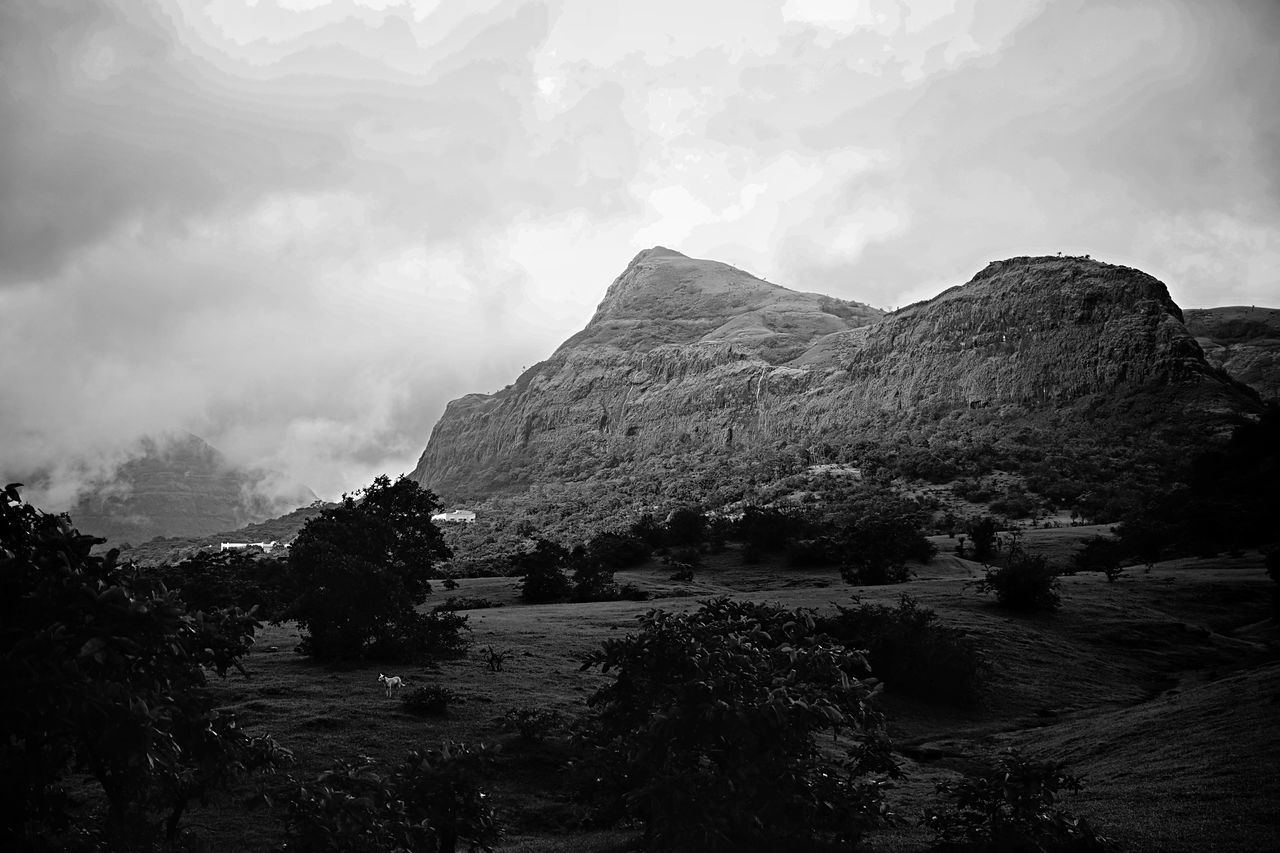 The Great Outdoors With Adobe The Great Outdoors - 2016 EyeEm Awards Feel The Journey An Indian Tale India Travel Photography Monochrome Travel Black And White Photography Blackandwhite Photography Black & White Black And White Real Photoshoot Experience World Traveller Real Photography World Photography Fresh On Eyeem  EyeEm Best Shots Landscape
