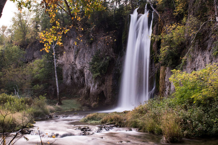 Long exposure of Spearfish Canyon waterfall in South Dakota South Dakota Beauty In Nature Day Forest Landscape Long Exposure Motion Nature No People Outdoors Plant River Rock - Object Scenics Spearfish Canyon Tranquil Scene Tree Water Waterfall