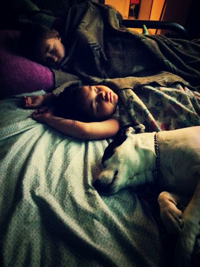 Protecting his girls. ♥ Nieces Protector Dog Dog Love