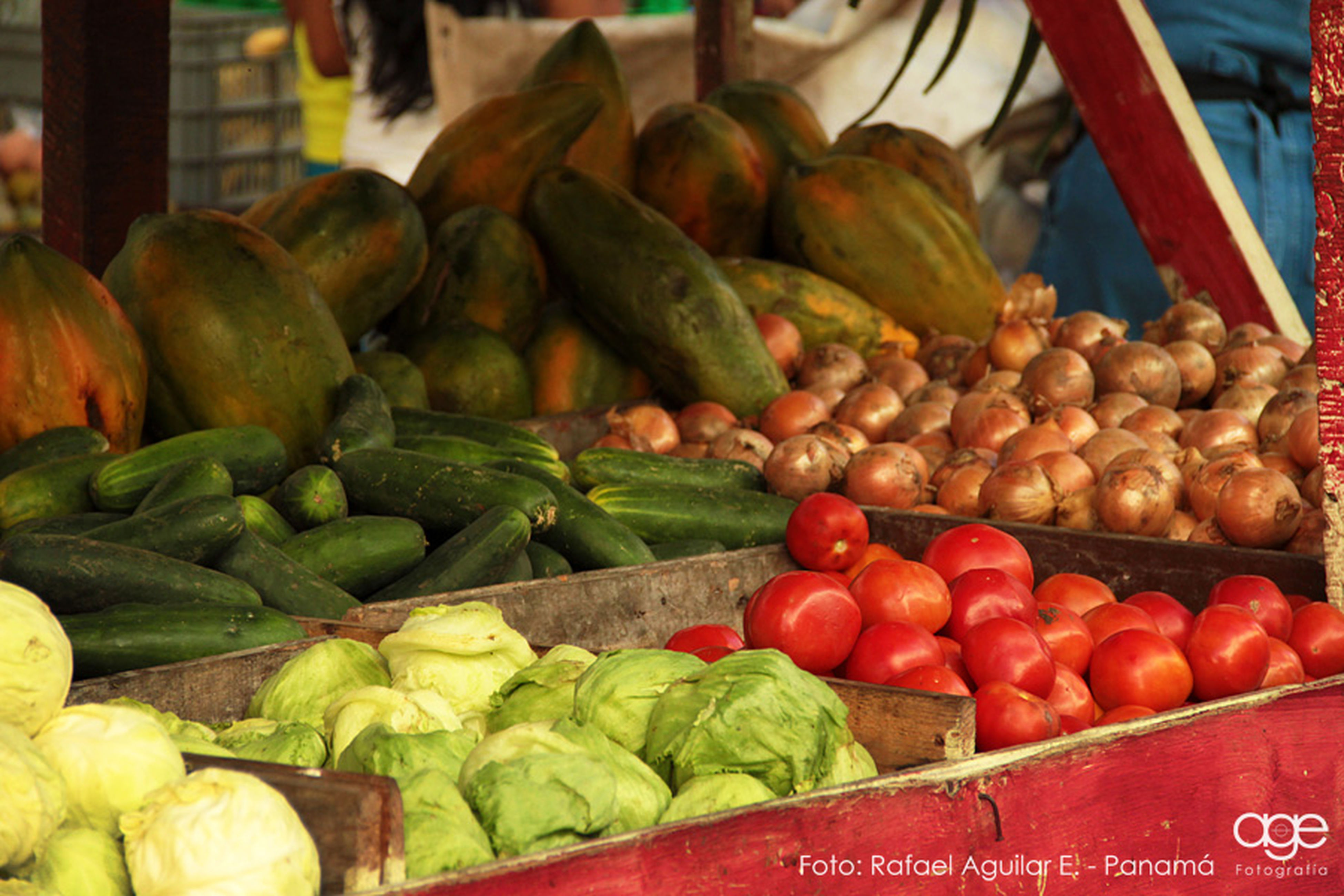 food and drink, food, healthy eating, freshness, for sale, vegetable, market stall, retail, market, abundance, large group of objects, choice, sale, still life, variation, display, indoors, raw food, fruit, close-up