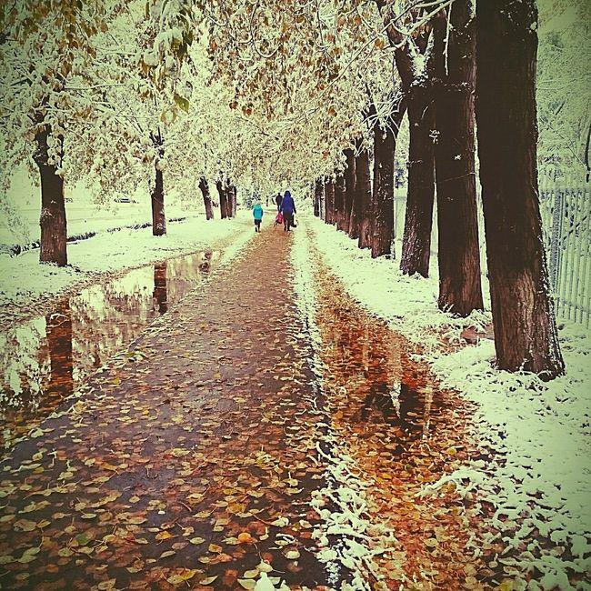 Зимапришла