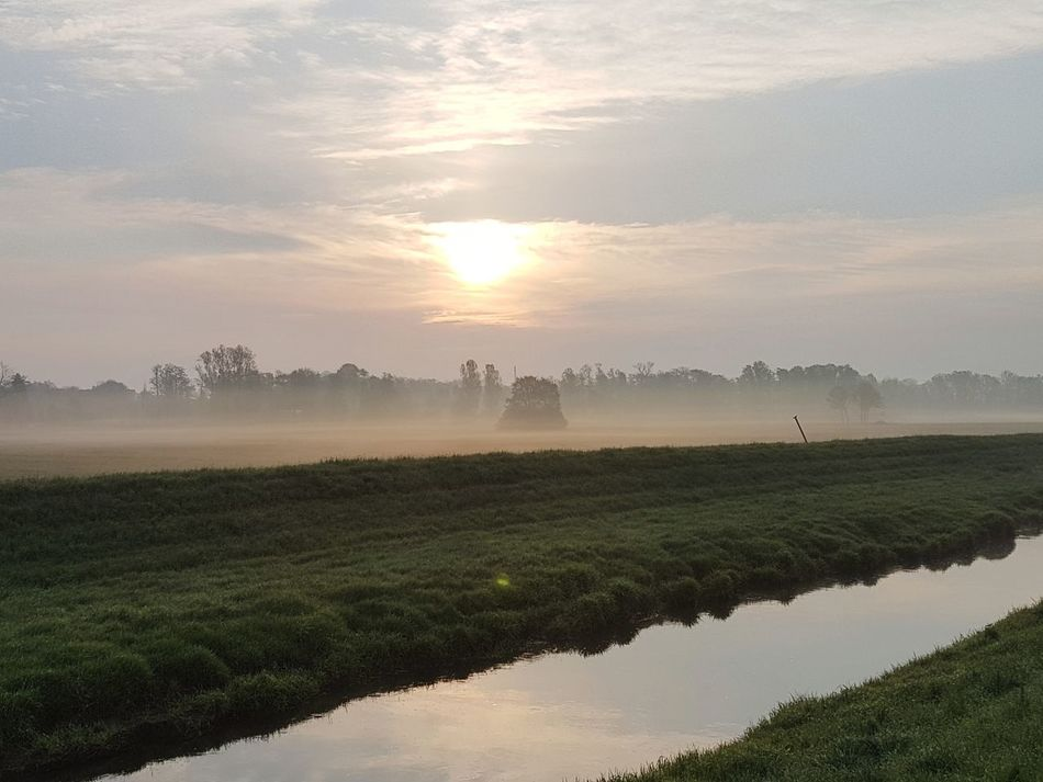 Field Fog Tree Rural Scene Reflection Landscape Beauty In Nature Nature Agriculture Dawn Sunset Scenics Cloud - Sky Sunlight Sun Morning Tranquility Beauty Tranquil Scene Sky