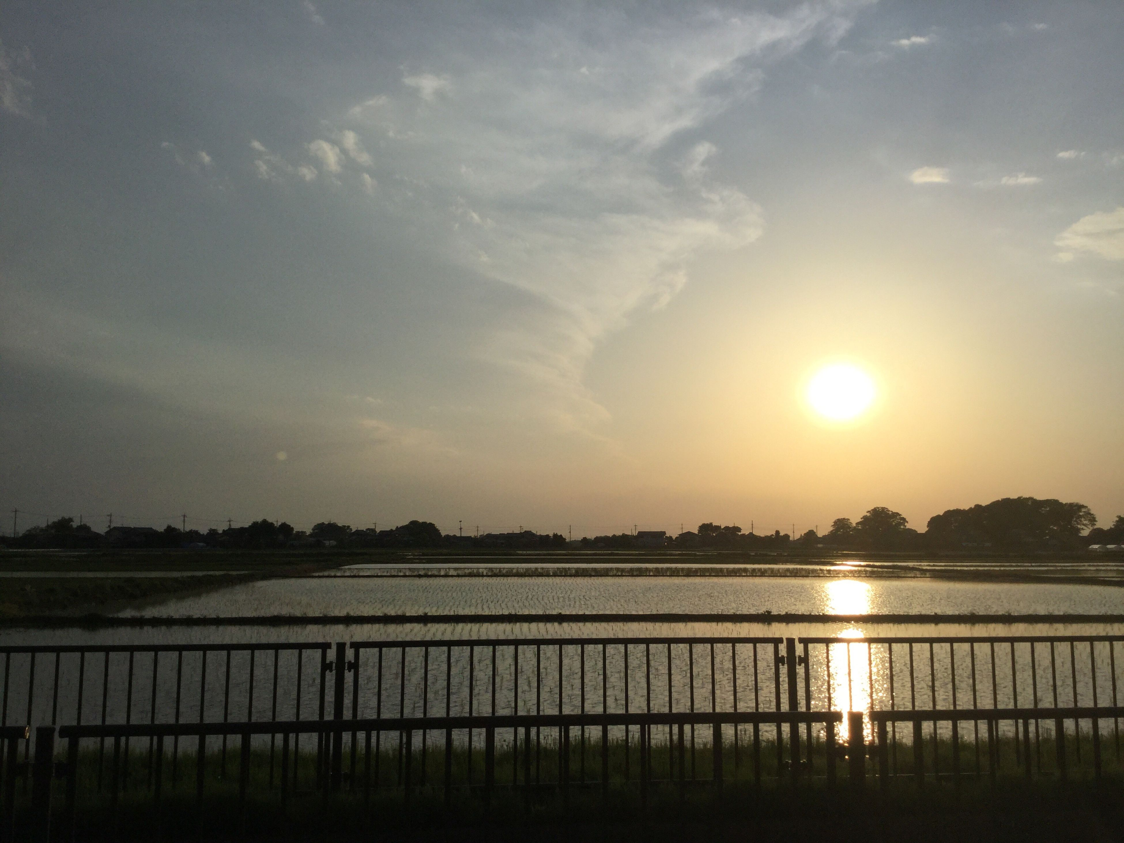 sunset, water, scenics, tranquility, beauty in nature, tranquil scene, nature, sky, sun, no people, lake, sunlight, outdoors, day