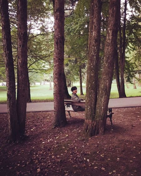 In Nature  Sitting One Person Tranquil Scene Outdoors Tranquility One Man Only In Touch With Nature Sitting Outside On The Bench In The Woods Trees