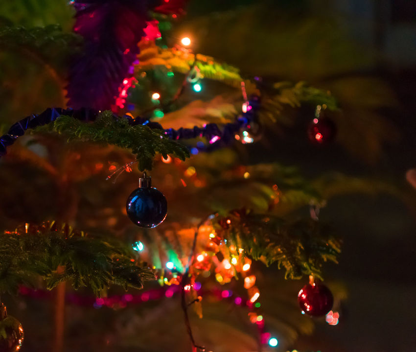 Merry Christmas Arts Culture And Entertainment Bankura Blue Ball Bokeh Bubble Christmas Decorations Christmas In Calcutta Christmas Tree Colourful Creative Light And Shadow Cultures Focus On Foreground Glass Glass - Material Glowing Selective Focus Shiny Sphere