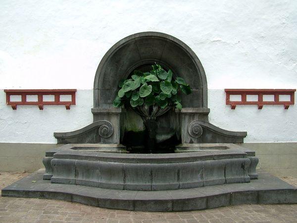 Architecture Canary Islands Flower Fountain No People SPAIN Tenerife Teneriffa