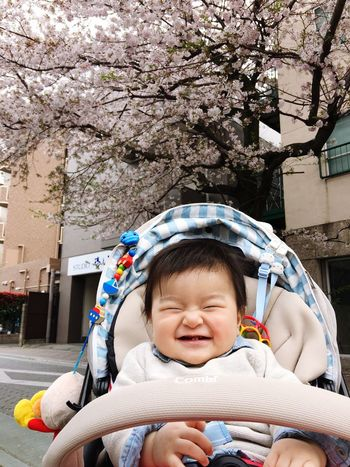 Baby Smiling Childhood Baby Stroller Sitting Mysweetbaby Toddler  Innocence Cute Babyhood Japanese Cherry Blossoms Cherry Blossoms Happiness Love ♥