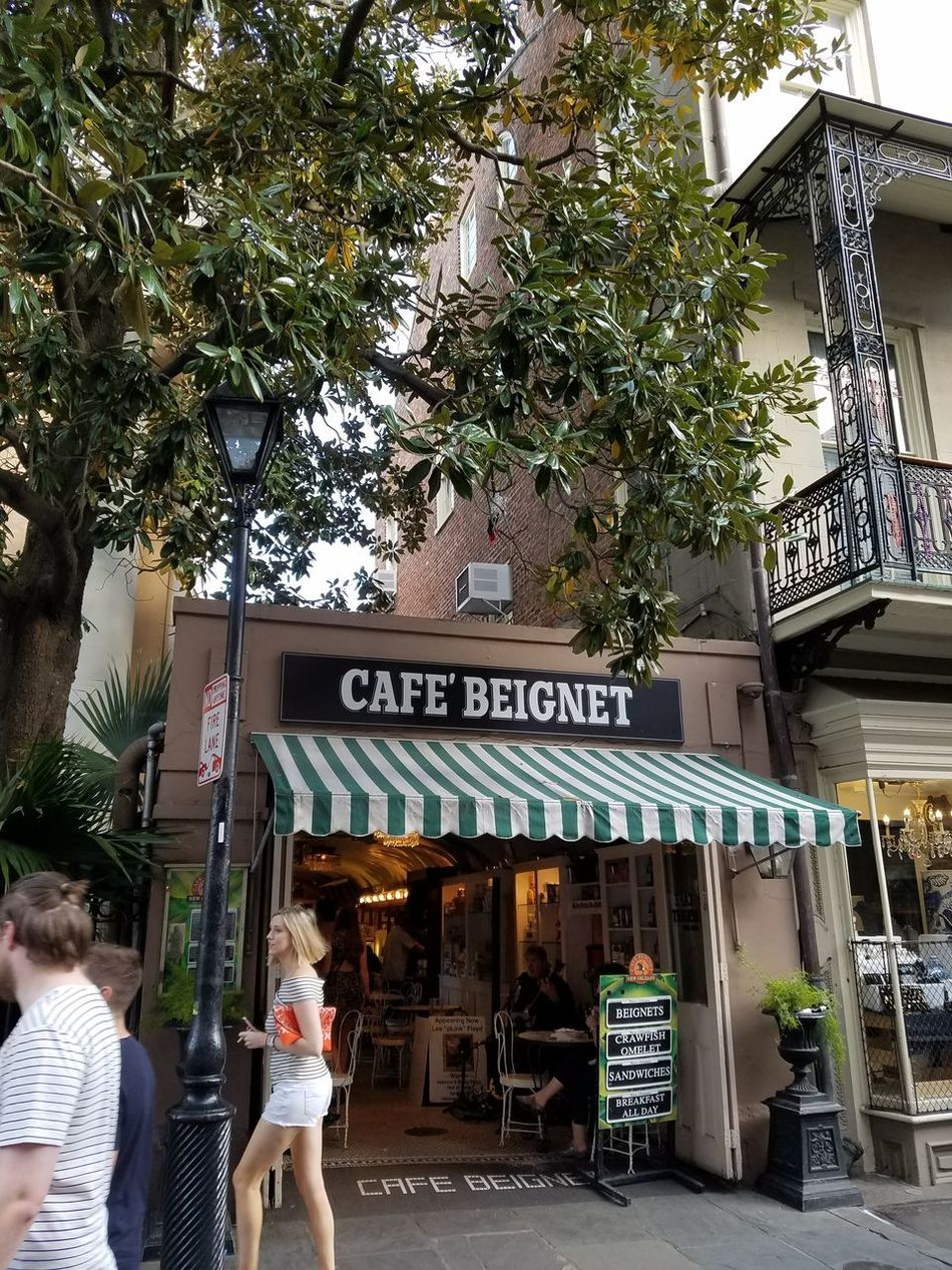 Cafe Beignet  NOLA