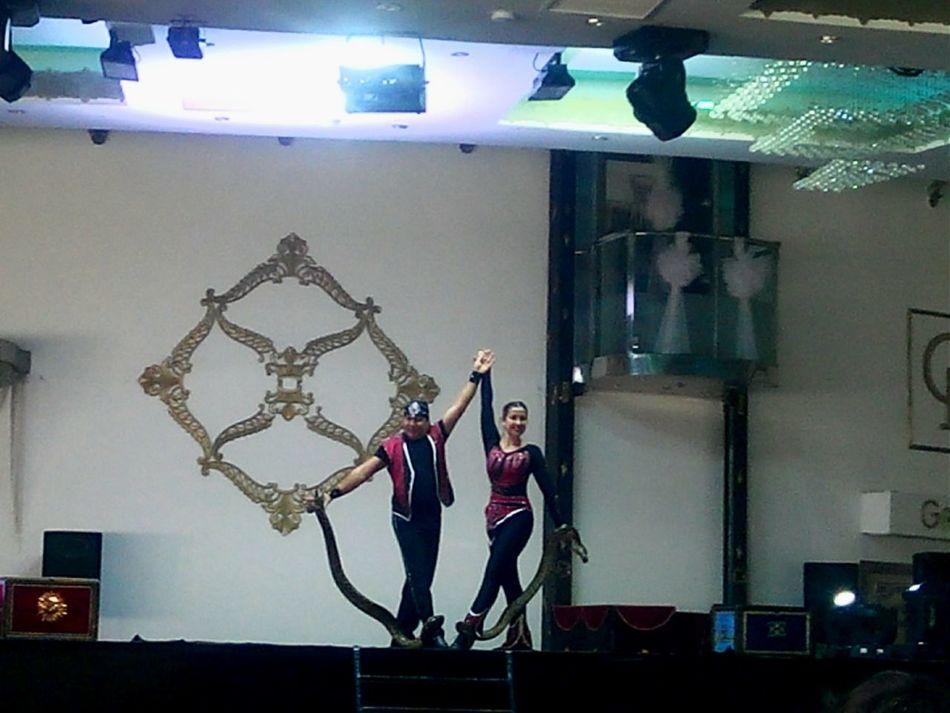 Sirk Circus Cesaret Yılan Snakes Yılanlı Gösteri Courage Show Snake Chance Encounters