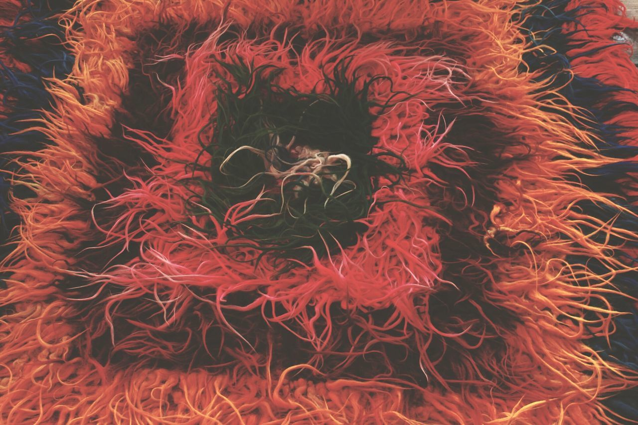 Red Close-up No People Indoors  Backgrounds Day Rug Old Rug Colorful Multicolored Hairy Rug