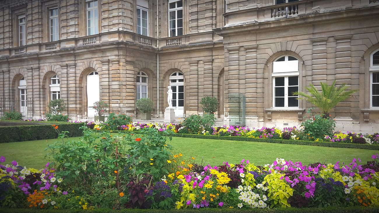 Jardin Du Luxembourg Sénat Fleurs D'été