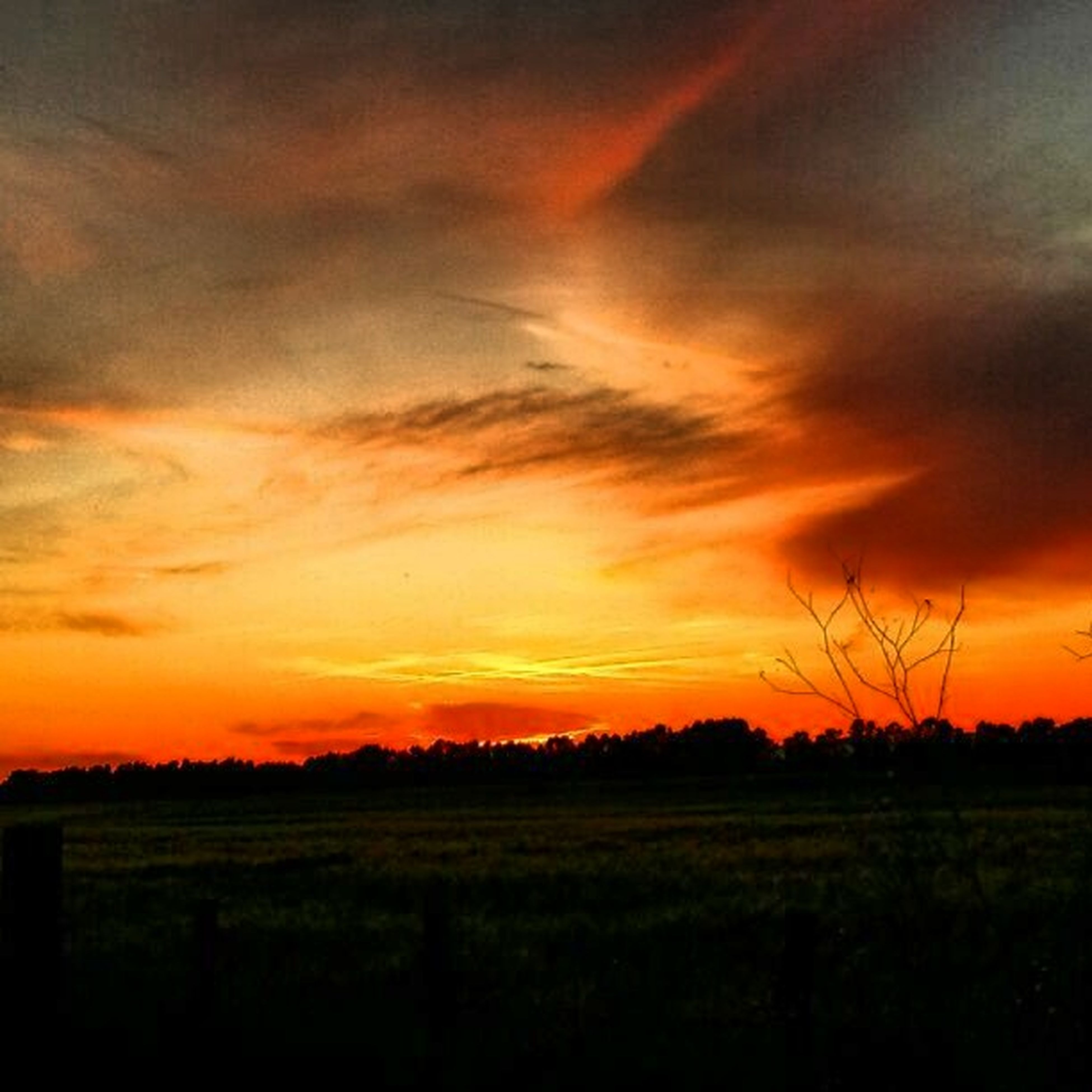 sunset, tranquil scene, scenics, landscape, orange color, tranquility, beauty in nature, sky, field, silhouette, nature, idyllic, cloud - sky, dramatic sky, tree, cloud, growth, grass, cloudy, outdoors