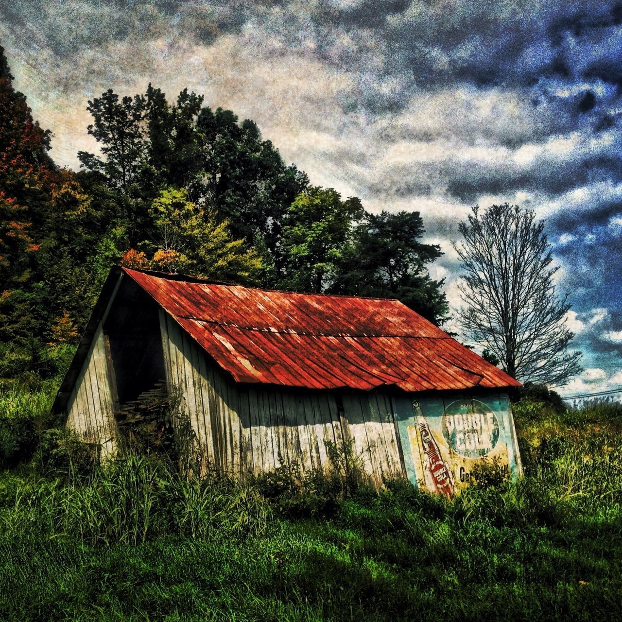 tree, architecture, built structure, building exterior, no people, house, sky, day, roof, grass, field, outdoors, barn, growth, landscape, nature, beauty in nature