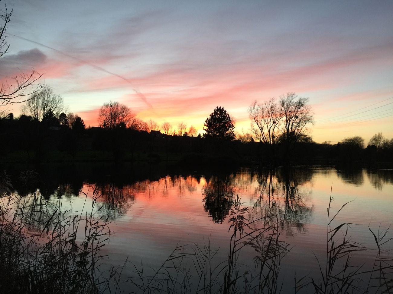 Landscape Etangs Nature Sky Seine Et Marne Paysage Reflection 77 Lake Lac Beautiful Orangesky IPhoneography Iphone6plus