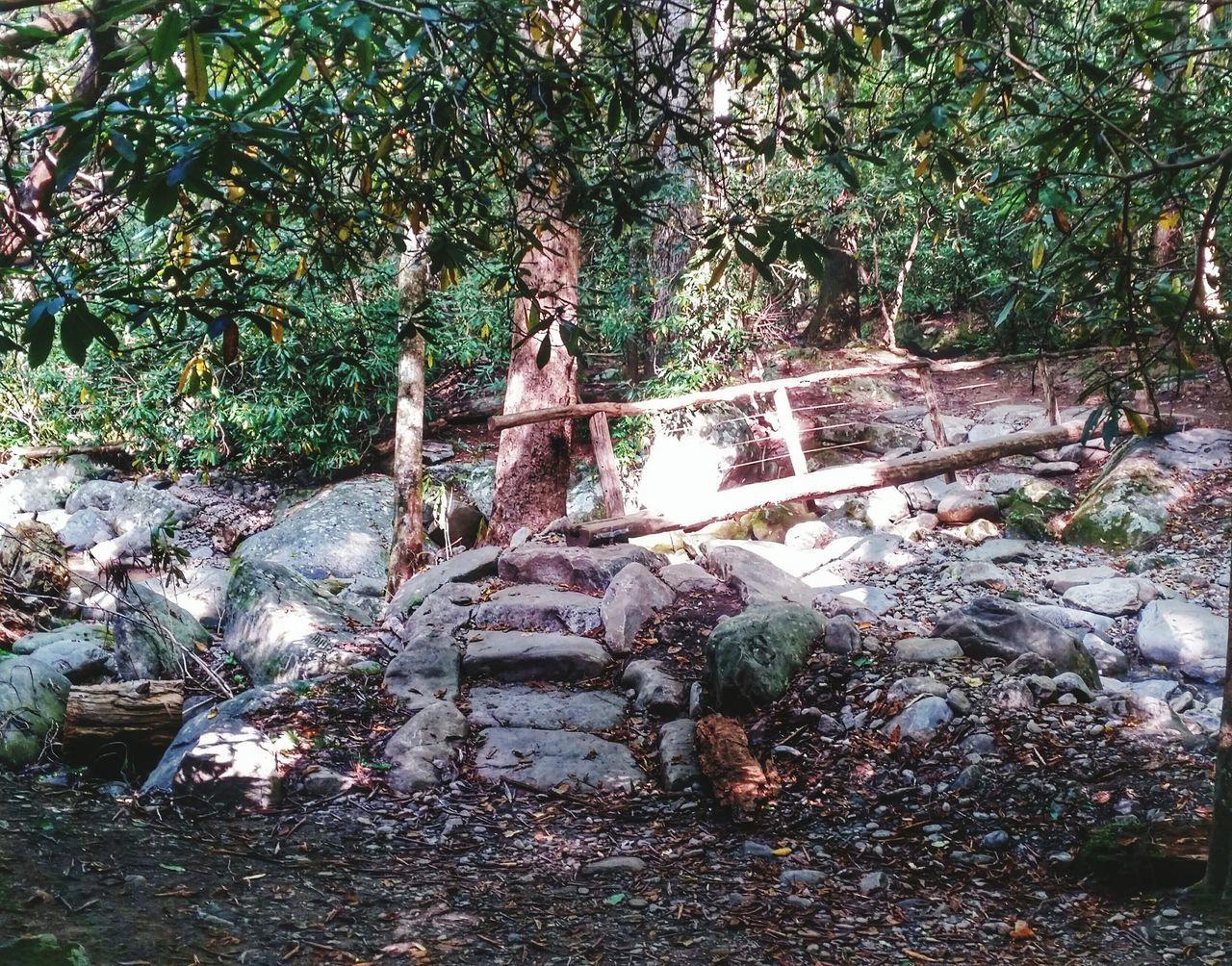 Mountain Hiking Hiking Trails Creek Crossing